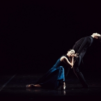 "Ballet by B. Eifman to the music of P.I. Tchaikovsky ""Anna Karenina"""